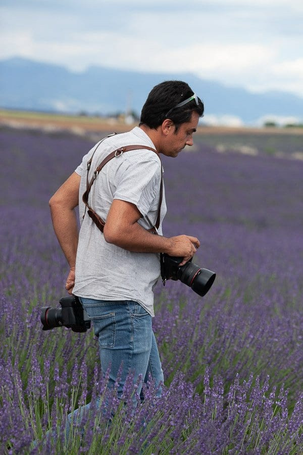 Luca over lavender fields, Provence
