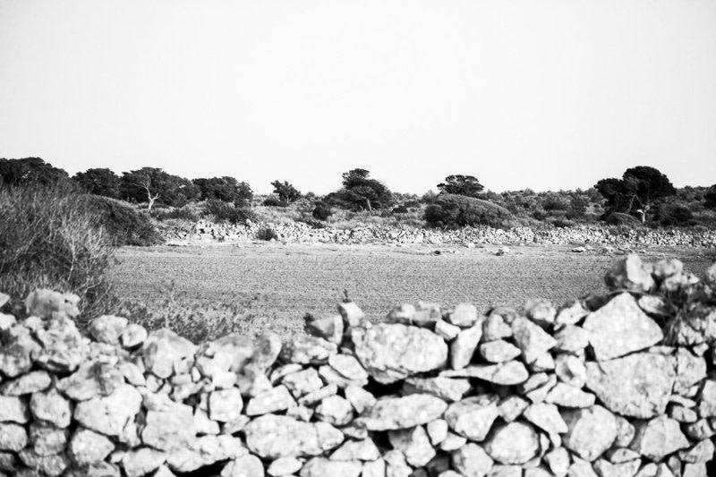 Formentera Countryside walls