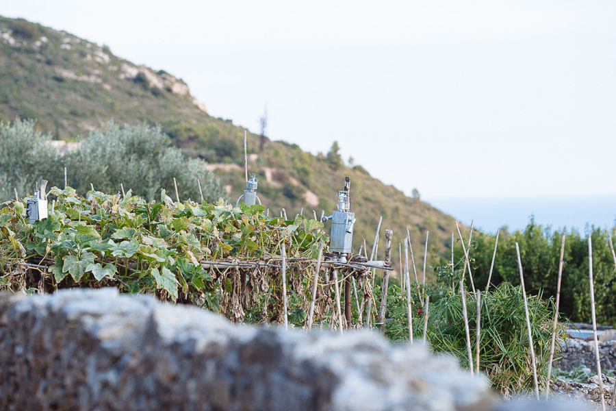 Verezzi orti Liguria
