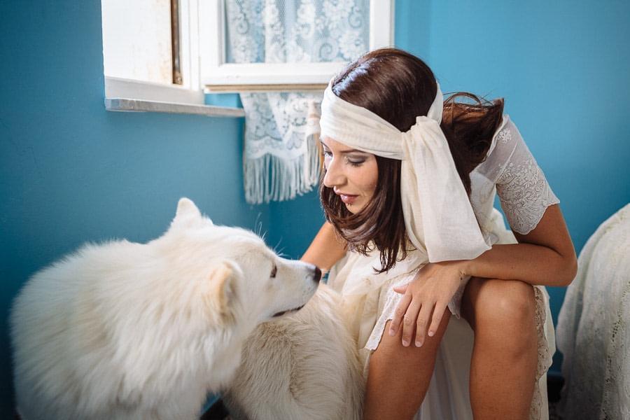 Cane della Sposa Matrimonio